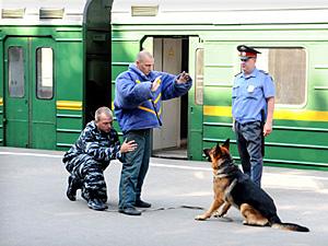 Сегодня День транспортной милиции России.