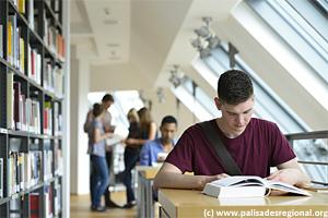 dvuh urovnevoe obuchenie Организация учебного процесса: двухуровневое и модульное обучение, кредитные системы, компетентностный подход